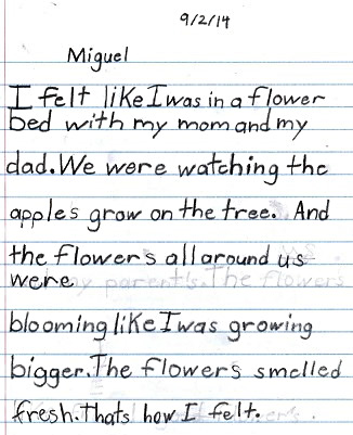 Miguel's thoughts